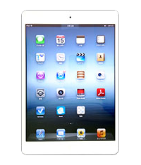 Option ipadmini
